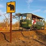 Simbabwe Hwange Nationalpark Elephant Express Iwanowskis Reisen - afrika.de