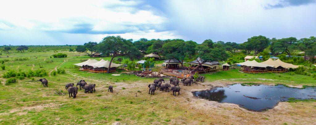 Simbabwe Hwange National Park Somalisa Acacia Camp Iwanowskis Reisen - afrika.de