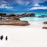 Grosse Südafrikareise