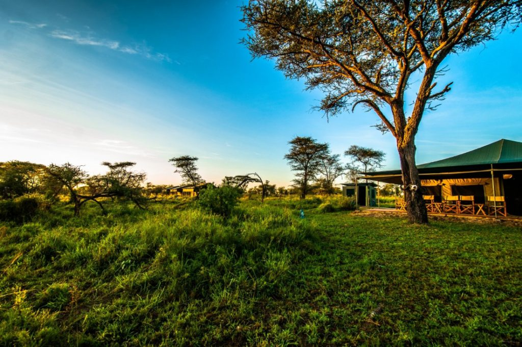 Tansania Serengeti National Park Angata Serengeti Camp Iwanowskis Reisen - afrika.de