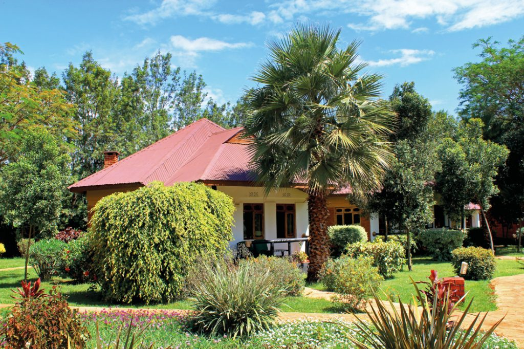 tansania-bougainvillea-safari-lodge