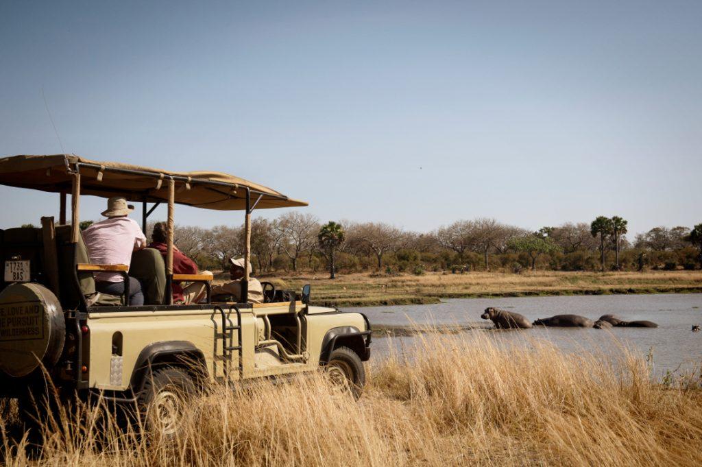 Tansania Katavi Nationalpark Chada Katavi Pirschfahrt Iwanowskis Reisen - afrika.de