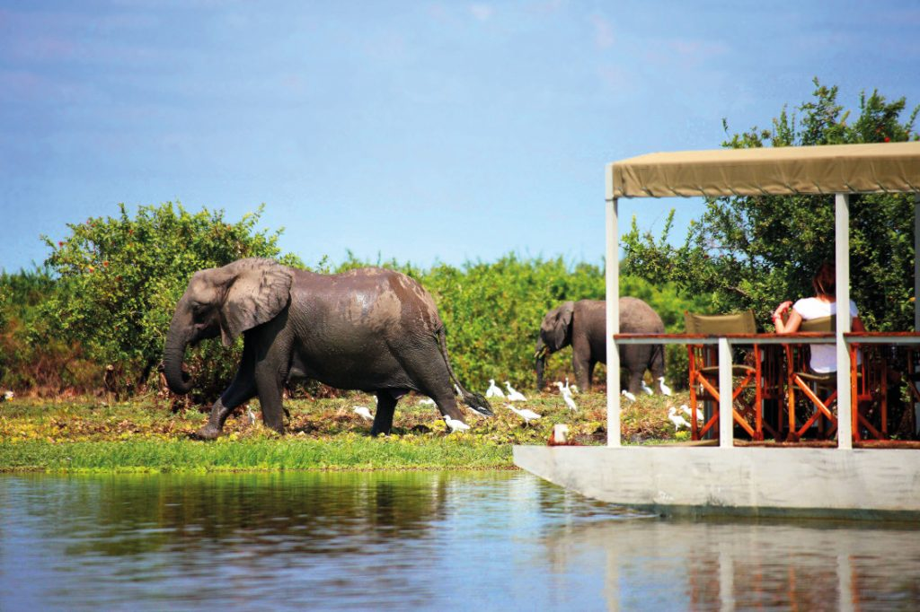 Tansania Selous National Park Siwandu Bootsfahrt Iwanowskis Reisen - afrika.de