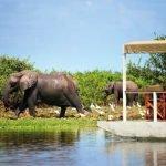 Tanzania Southern Highlights