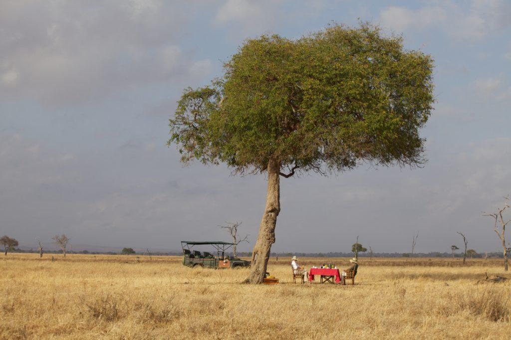 Tansania Mikumi National Park Vuma Hills Tented Camp Buschfrühstück Iwanowskis Reisen - afrika.de