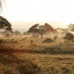 Höhepunkte Ostafrikas