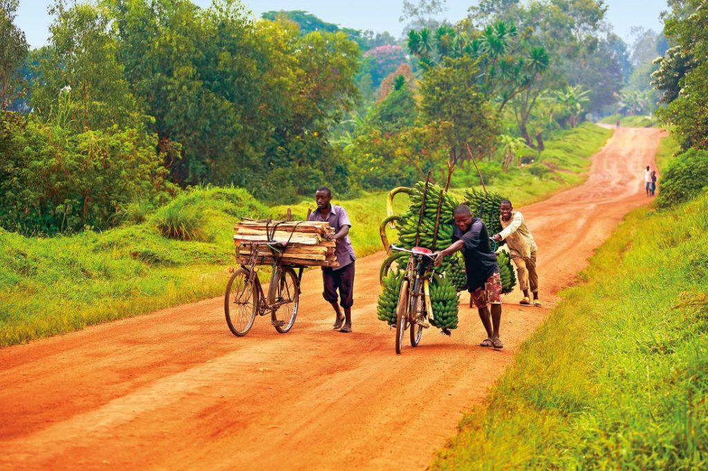 Uganda die Perle Afrikas Selbstfahrertour Iwanowskis Reisen