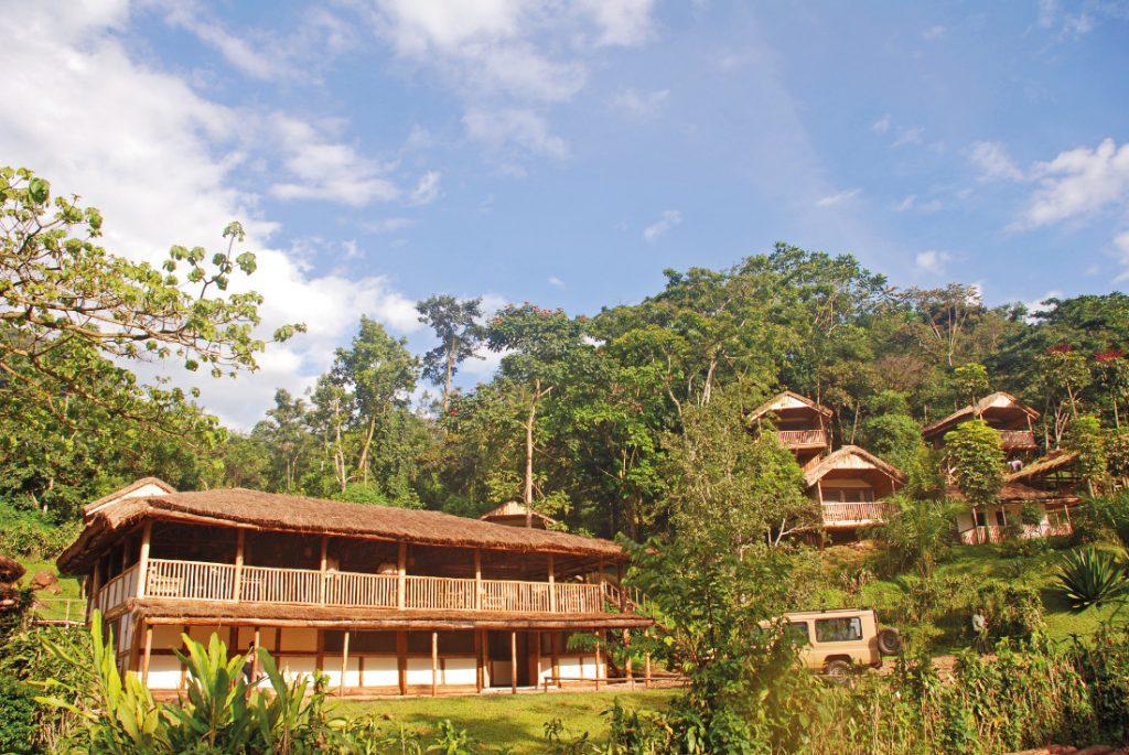 Uganda Bwindi Impenetrable Forest Buhoma Lodge Iwanowskis Reisen - afrika.de