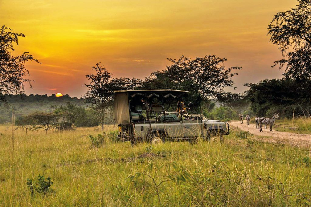 Uganda Lake Mburo Nationalpark Pirschfahrt Iwanowskis Reisen - afrika.de