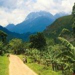 Uganda Safari Ruwenzuri Berge Iwanowskis Reisen - afrika.de