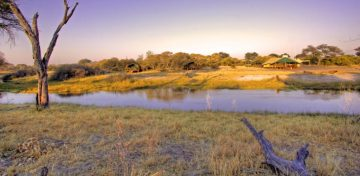 Camp Savuti Panorama