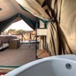 Camp Savuti Zelt