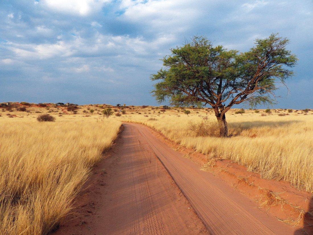 Sandpiste in Namibia - Iwanowskis Reisen