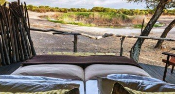 Namibia, Onguma Game Reserve, Tree Top Camp, Wasserloch - afrika.de