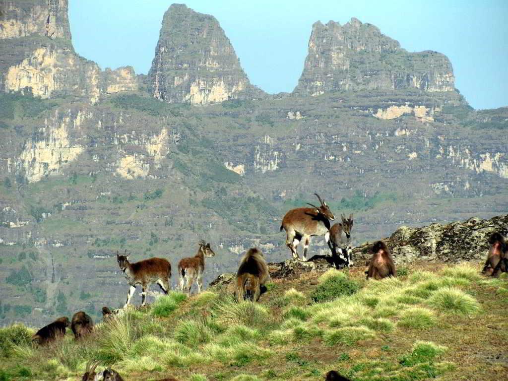 afrika reiseziele