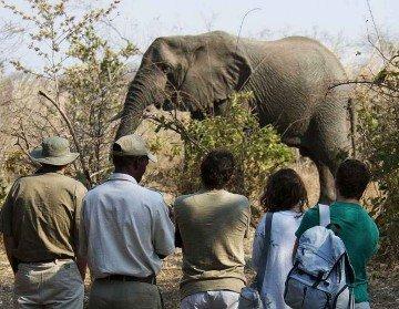 Trekking-Safari Afrika mit Iwanowski - 2 - www.afrika.de