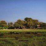 Klassische Botswana Safari