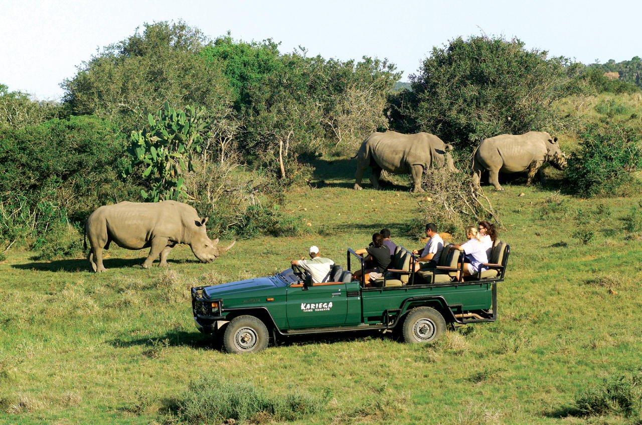 SüdafrikaKariega Game Reserve Settlers Drift Pirschfahrt Iwanowskis Reisen - afrika.de