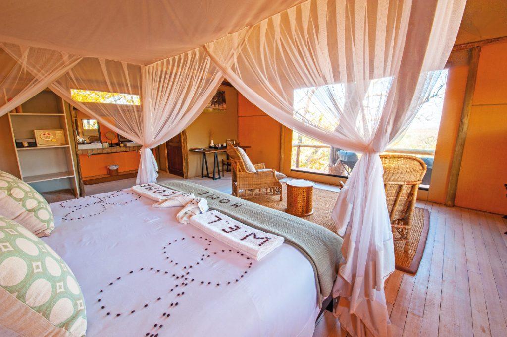 Botswana Savute Region Ghoha Hills Camp Zelt Unterkunft Iwanowskis Reisen - afrika.de