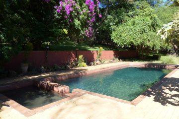 Kubu Lodge Pool - afrika.de Iwanowskis Individuelles Reisen