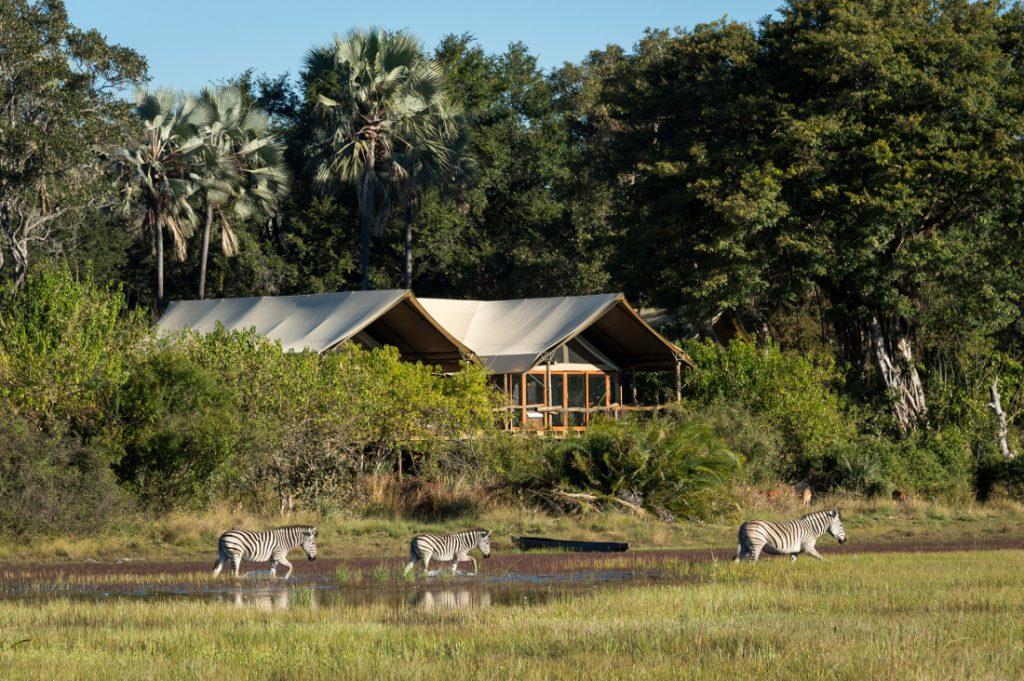 Botswana Okavango Delta Wilderness Safaris Tubu Tree Camp Iwanowskis Reisen - afrika.de