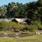 Botswana mit Wilderness Safaris