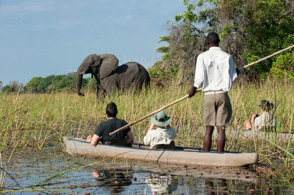 Botswana Moremi Game Reserve Wilderness Safaris Xigera Camp Mokorofahrt Iwanowskis Reisen - afrika.de