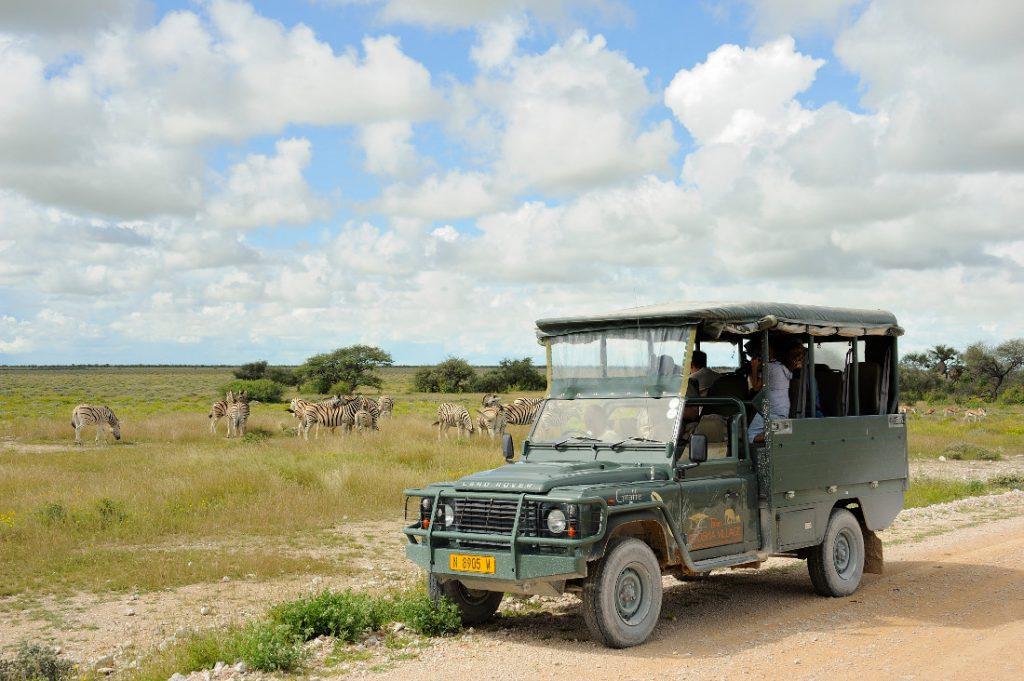 Namibia Etosha Nationalpark Etosha Village Pirschfahrt Iwanwoskis Reisen - afrika.de