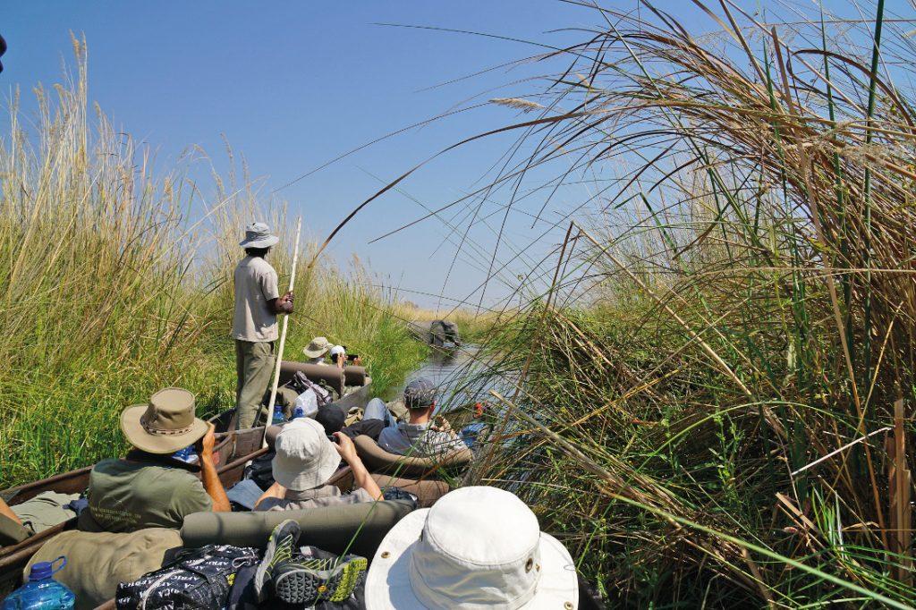 Botswana Okavango Delta Mokorofahrt Sunway Safari Iwanowskis Reisen - afrika.de