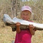 Familien-Abenteuer Safari