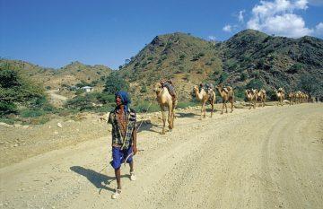 Äthiopien Danakil Senke Karawane Kamele Iwanowskis Reisen - afrika.de