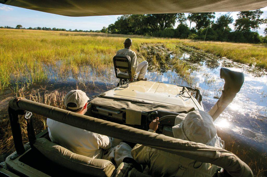 Botswana Okavango Delta Bushman Plains Pirschfahrt Iwanowskis Reisen - afrika.de