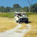 The Zebra Safari - vom Hwange zum Chobe National Park