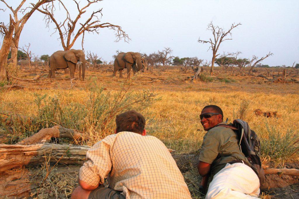 Botswana Safari Fußpirsch Iwanowskis Reisen - afrika.de