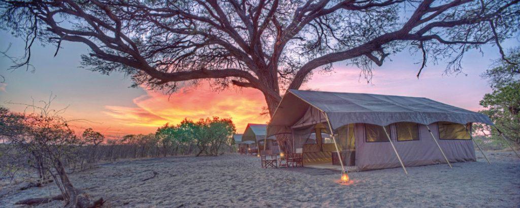 Botswana Chobe National Park Savute under Canvas Zeltunterkunft Iwanowskis Reisen - afrika.de