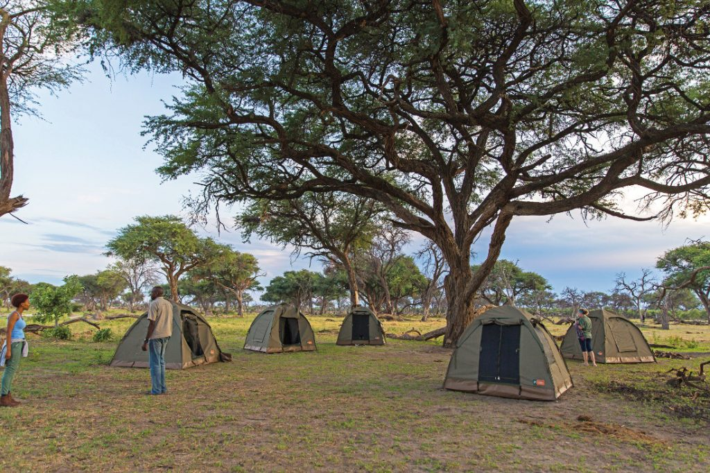 Botswana Safari Bushways Zeltcamp Iwanowskis Reisen - afrika.de
