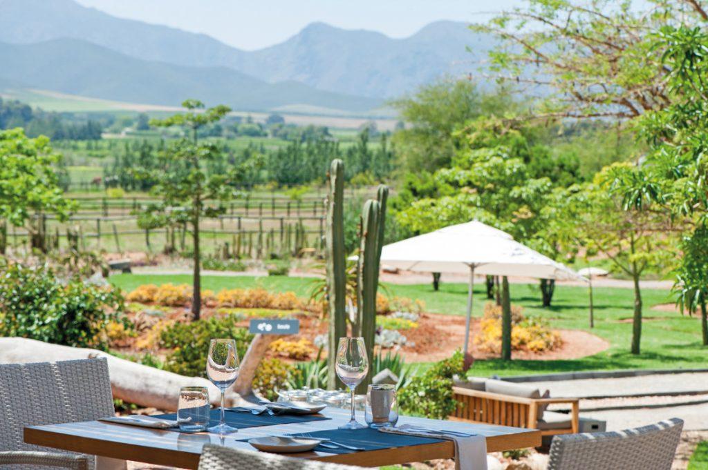Südafrika Robertson Mo & Rose at Soekershof Garten Iwanowskis Reisen - afrika.de
