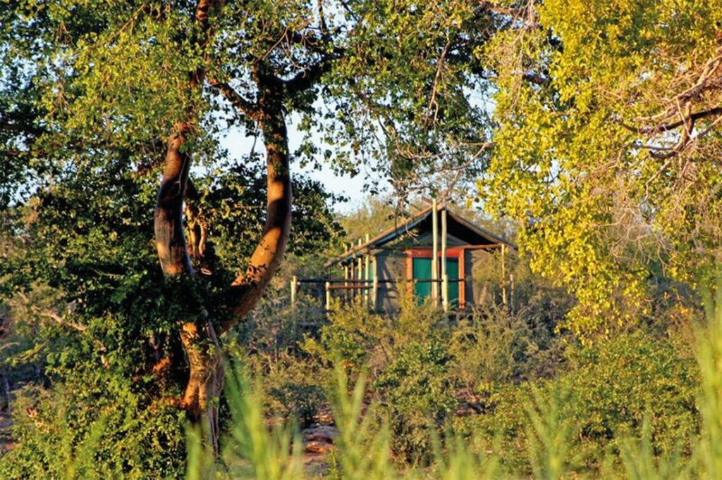 Südafrika Greater Kruger National Park Mtomeni Camp Iwanowskis Reisen - afrika.de