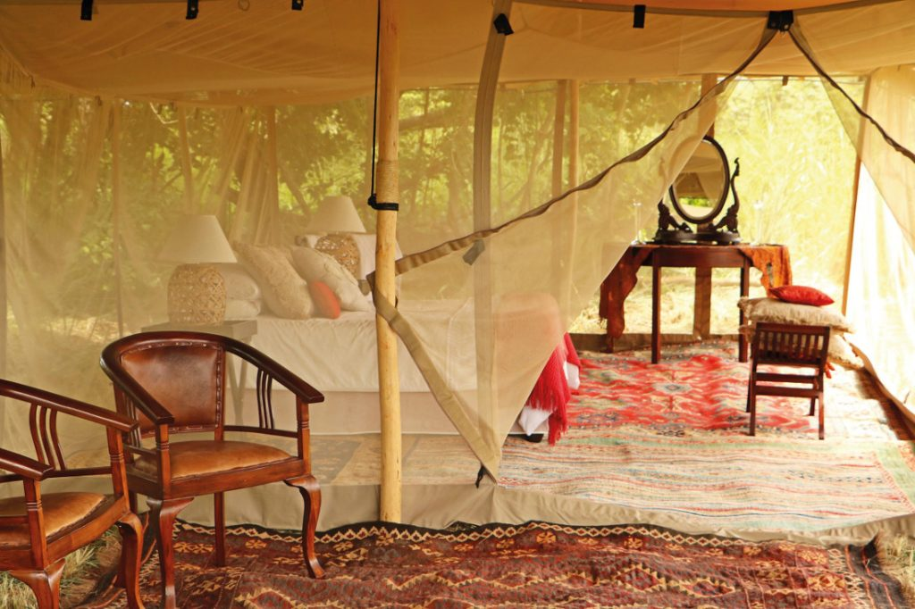 Sambia Lower Zambezi National Park Tafara Springs Zeltunterkunft Iwanowskis Reisen - afrika.de