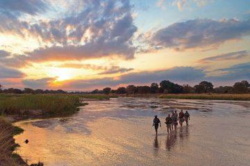 Sambia South Luangwa National Park Wandersafari Fußpirsch Iwanowskis Reisen - afrika.de