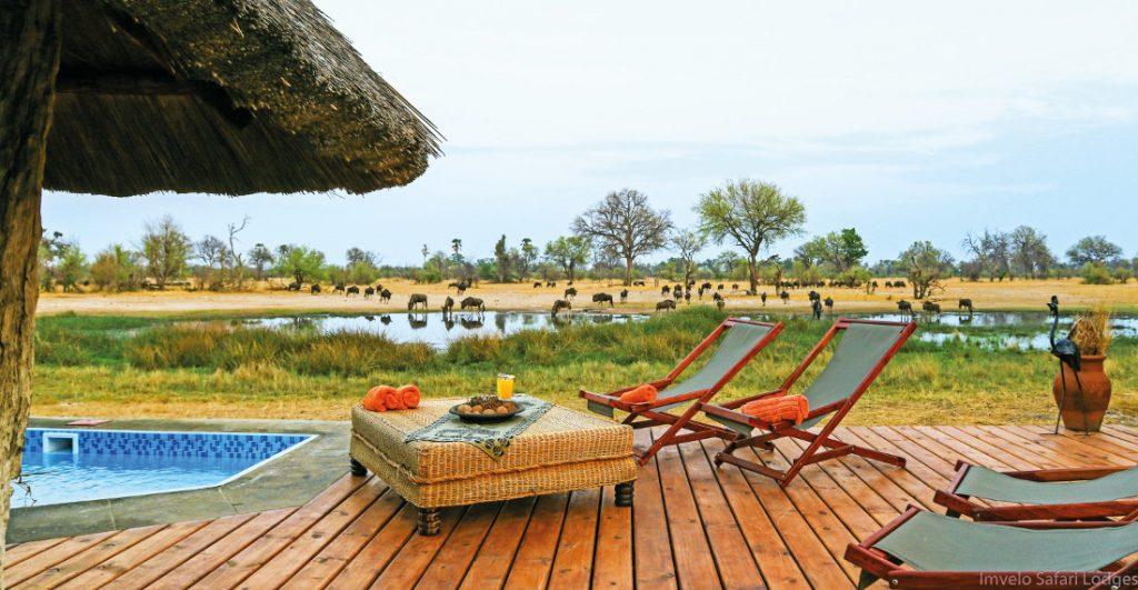 Simbabwe Hwange National Park Bomani Tented Lodge Iwanowskis Reisen - afrika.de