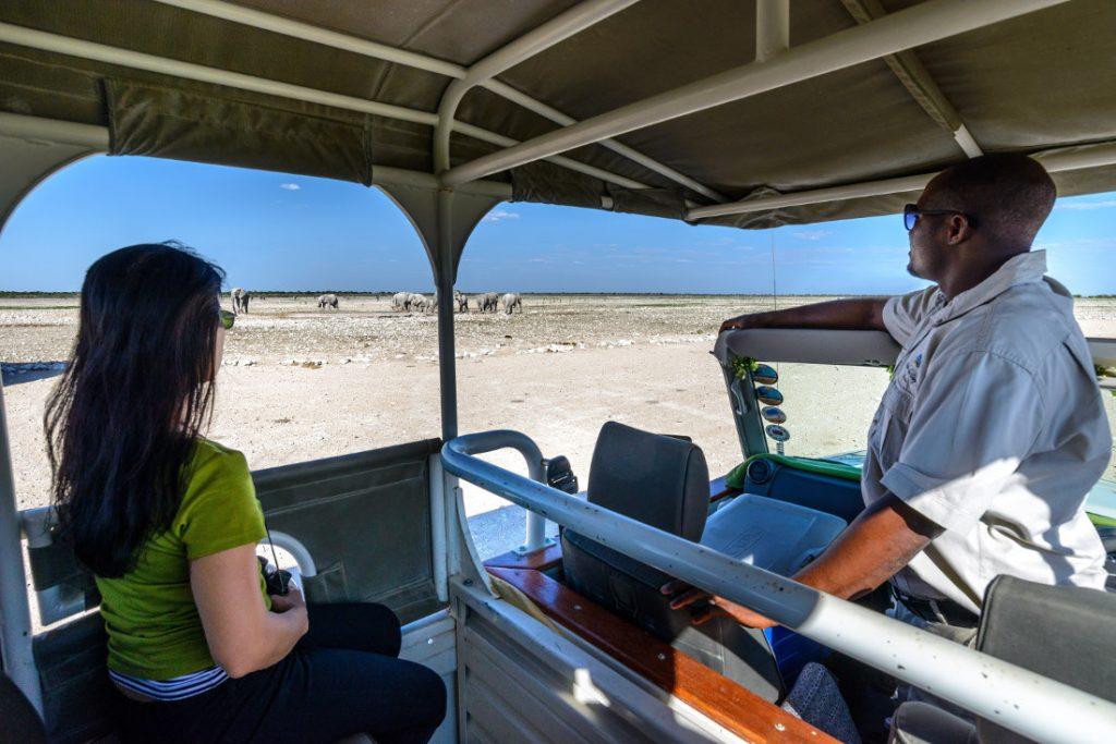Namibia Etosha National Park Etosha Safari Lodge Pirschfahrt Iwanowskis Reisen - afrika.de