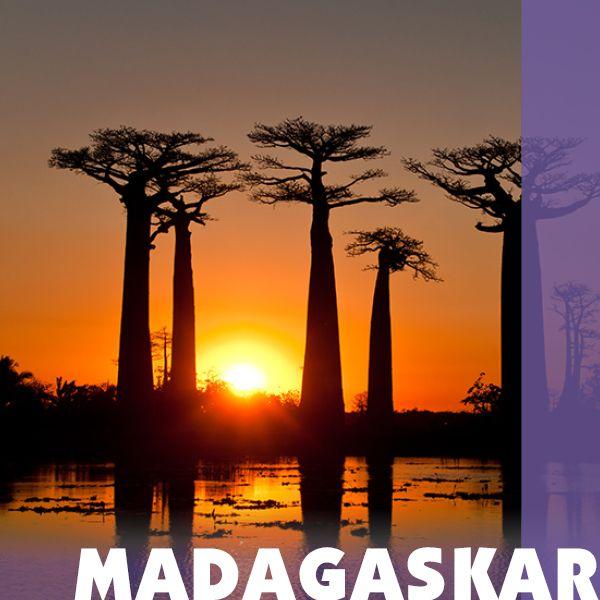 Reiseziel Madagaskar - Iwanowskis Reisen