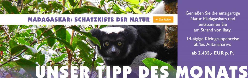 Tipp des Monats August - Madagaskar Reise - Iwanowskis Reisen