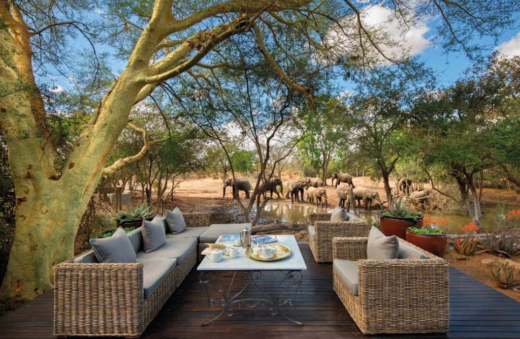 Südafrika Timbavati Game Reserve Ngala Safari Lodge Wasserloch Iwanowskis Reisen - afrika.de