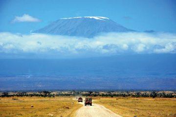 Kenia Amboseli NP Pirschfahrt Iwanowskis Reisen - afrika.de