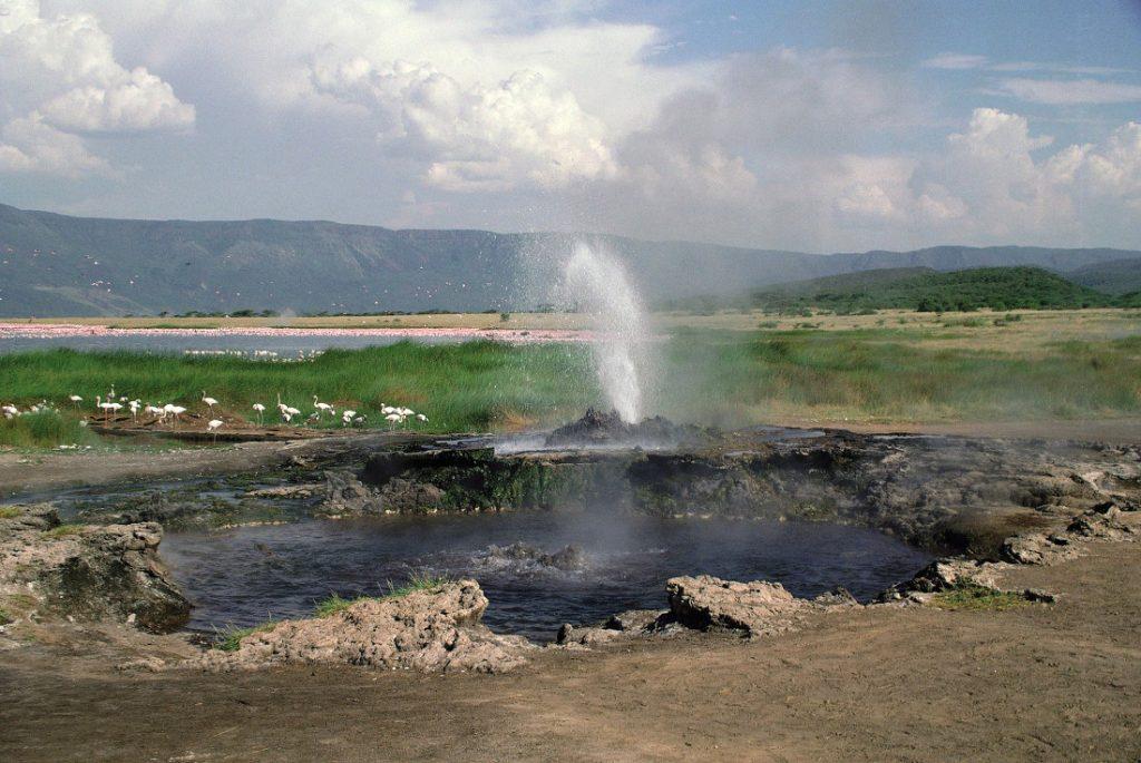 Tansania Lake Manyara NP Iwanowskis Reisen - afrika.de