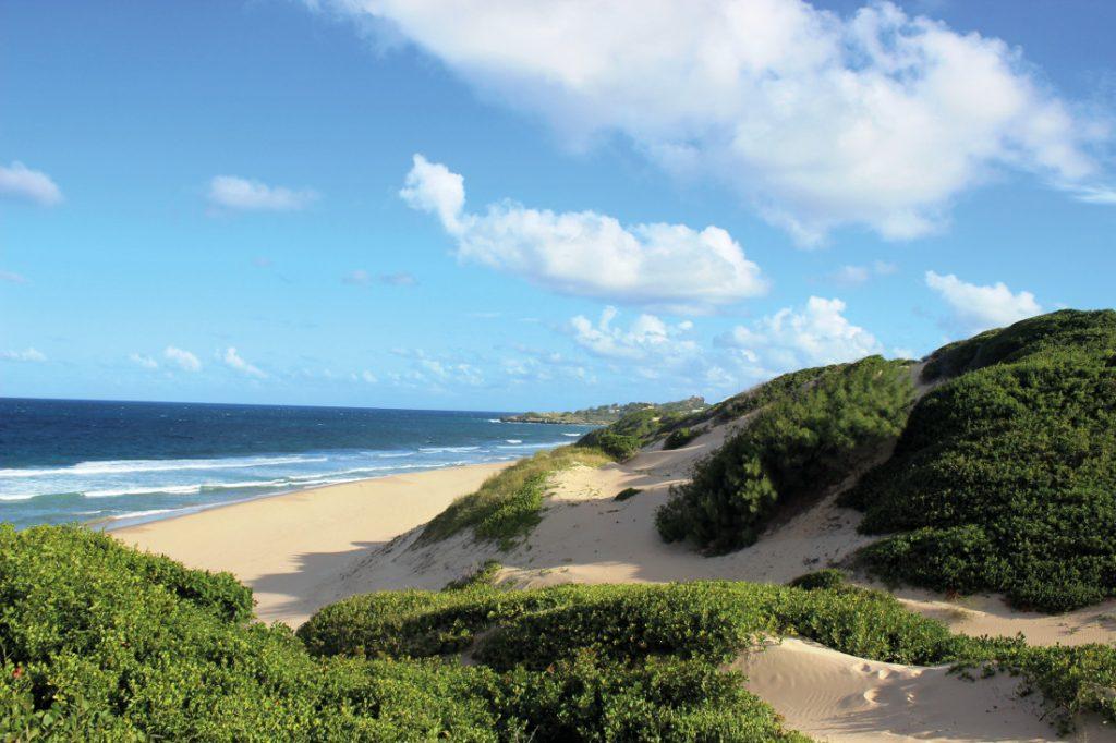 Mosambik Praia do Tofo Strand Iwanowskis Reisen - afrika.de