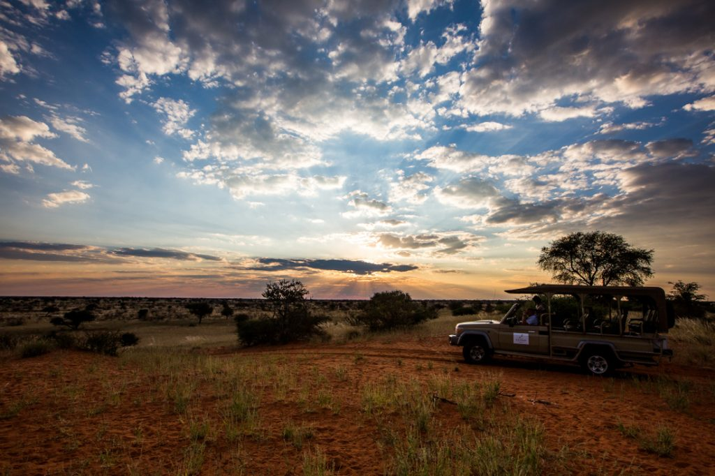 Namibia Kalahari Anib Lodge Pirschfahrt Iwanowskis Reisen - afrika.de