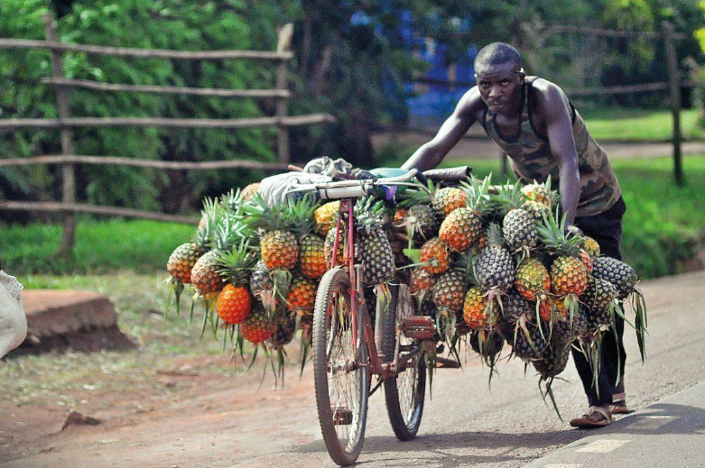 Ruanda Ananas-Verkäufer Iwanowskis Reisen - afrika.de